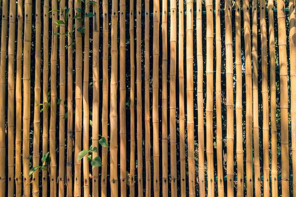 日式竹捲簾戶外使用還是放在室內更佳?使用上如何維護?